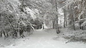Get outdoors and Enjoy a Walk in the Winter